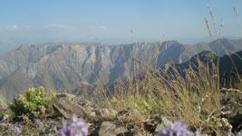 Отдых в горах Узбекистана в теплое время года
